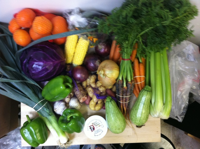 what $40 gets you at the farmers' market in november.